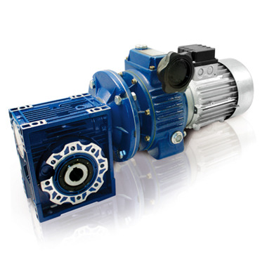 Worm Gear Reducer-Cast Iron Series